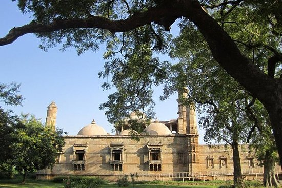 Private Tour Vadodara and Champaner With Guide and Entrances Ex...