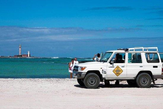 Excursion en 4x4 aux plages secrètes de Fuerteventura