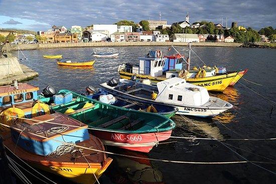 Gita di un giorno ad Ancud e Chiloe da Puerto Montt