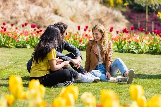 Keukenhof Gardens Half Day Guided Tour from Amsterdam with Free 1-Hour Cruise – fénykép