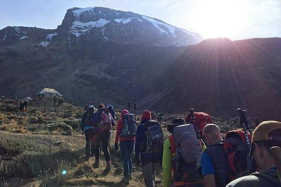 7 Days Machame Route Kilimanjaro Expedition صورة فوتوغرافية