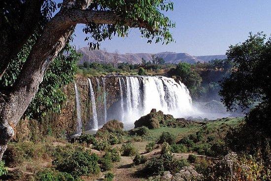 Фотография 8 Days - 7 Nights Classic Ethiopia Tour