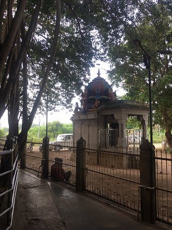 Lord Dakshinamoorthy Temple at Pattamangalam (Near Karaikudi / Tirupattur) in Sivaganga District is a very famous Gurusthalam. Those looking for a less crowded, still famous private temple, open throughout on Thursdays, as against other crowded ones near Pudukottai (Alangudi) or Kumbakonam (again, Alangudi) can have a peaceful time here.