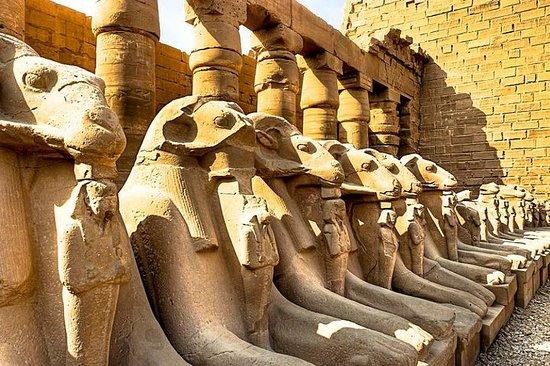 Privat bil til Luxor vender tilbage til...