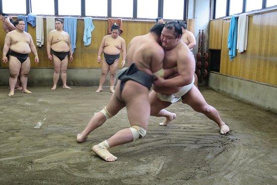 Visite à pied de Tokyo Sumo Morning...