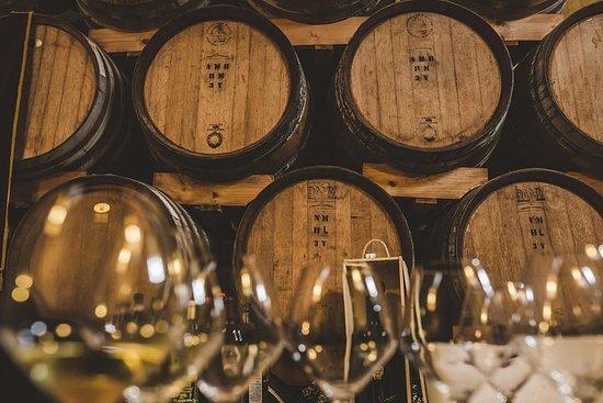 San Gimignano Vinsmagning erfaring...