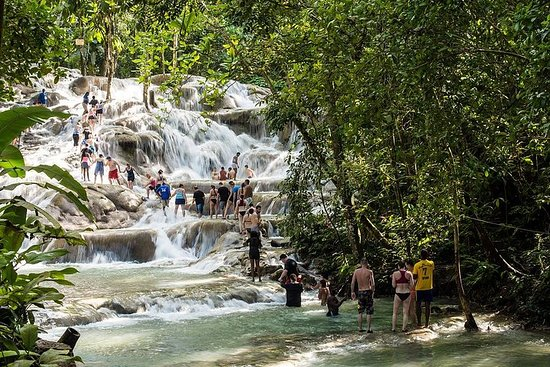 Private Blue Hole and Dunn's River Tour...
