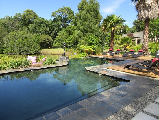 swimming pool and backside Luxury Garden Suite