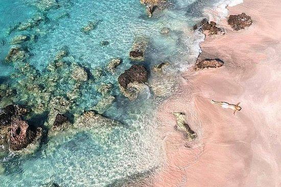Elafonisi海灘田園詩般的逍遙遊與當地美食和美酒-Elounda私人之旅