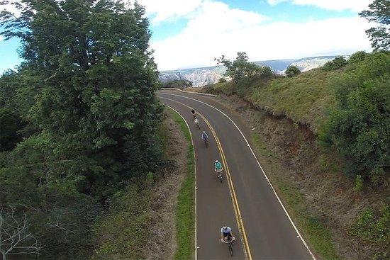 Waimea Canyon bicicleta Downhill