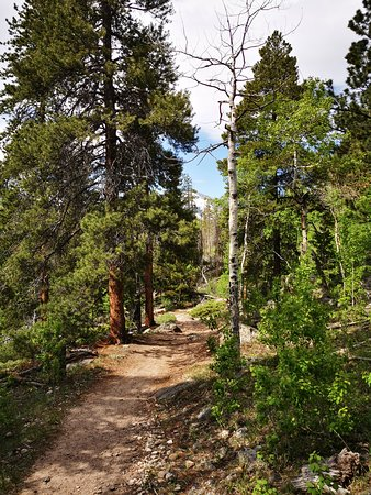 Bierstadt Lake Trail