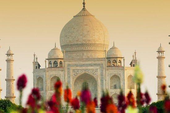 Visite du Taj Mahal en train express