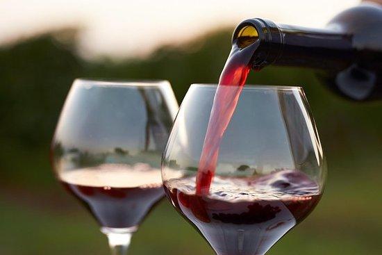 Tour do vinho em Kakheti, cidade de...