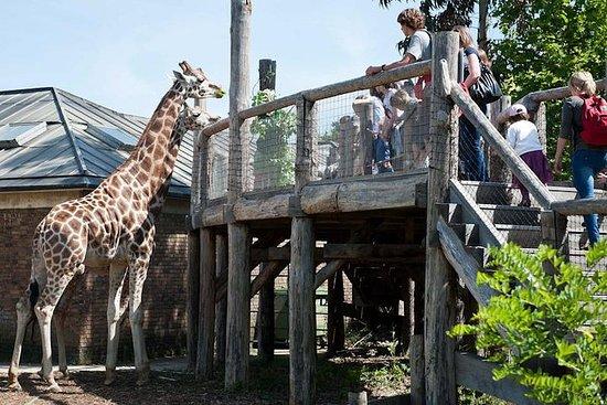 Billet d'entrée au zoo de Londres