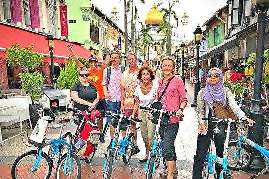 Lion City-Fahrradtour durch Singapur