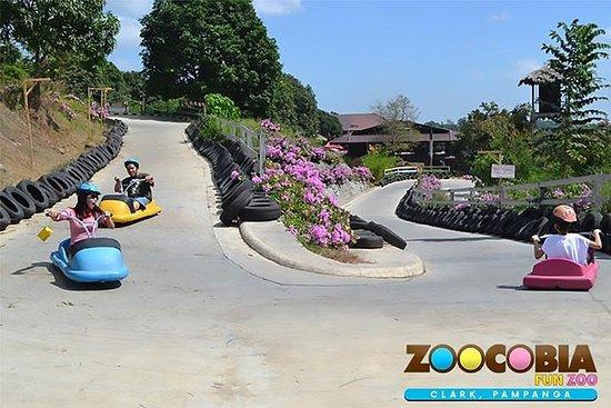 Excursão de um dia à Zoocobia