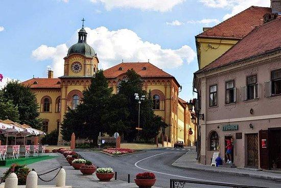 Novi Sad en Sremski Karlovci tour