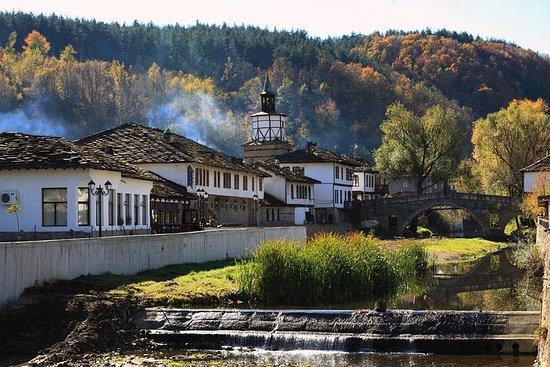 7-dagers privat boutique tur: Vin og historie i Bulgaria