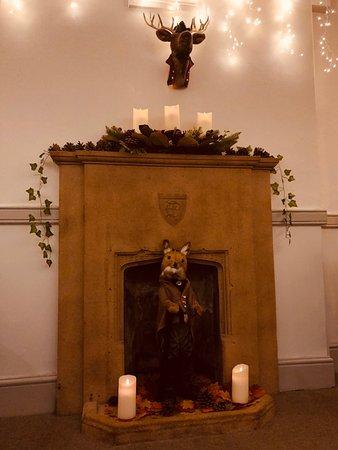 Fireplace fox