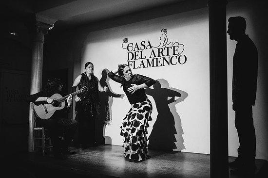 Spettacolo di flamenco tradizionale