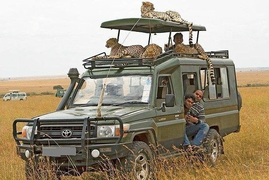 Private 10 Days Kenya Luxury Wildlife ...