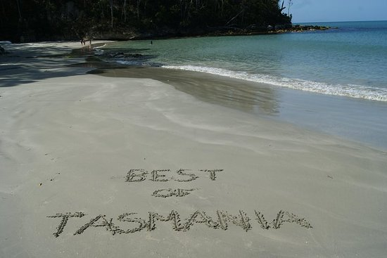 7-dagers beste av Tasmania: Bruny Island, Cradle Mountain, Wineglass...