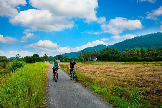 Excursion d'une demi-journée à vélo dans la campagne de Penang
