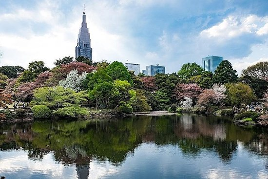 Tokyo Japanese Garden Lover's Private Tour with Nationally Licensed...