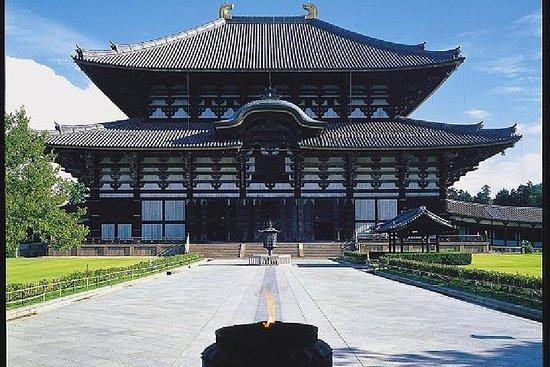 京都和奈良 1 日游——京都金阁寺和东大寺