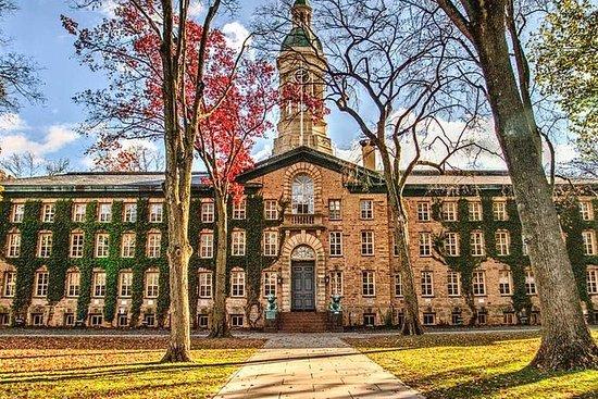 Princeton - Zentrum für Wissenschaft...