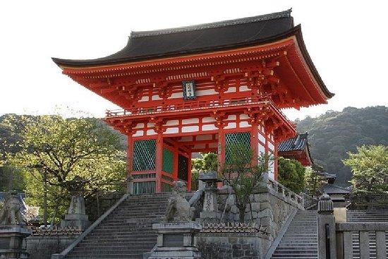 Excursión de 1 día a Kioto en tren...