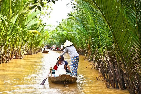 Mekong Delta Guided Tour from Ho Chi...