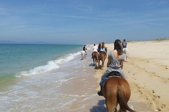 Hesteridning på stranden