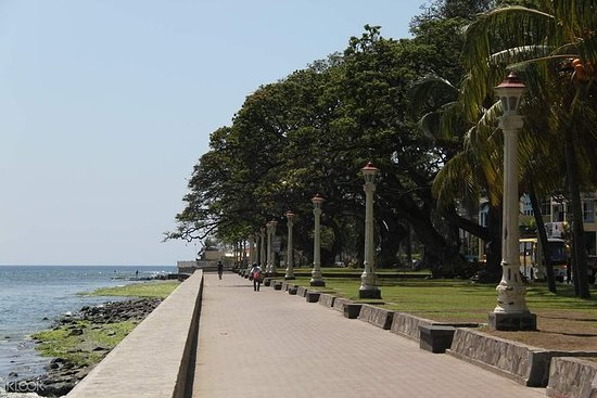 Dumaguete City & Countryside Whole Day Tour With Lunch