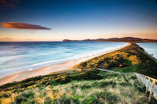 2 dager - to av Tasmanias beste tur