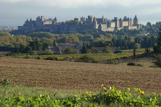 Carcassonne and Albi Private...