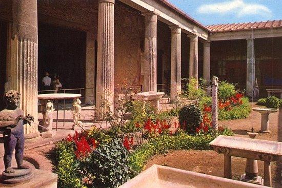 Van Rome: Pompeii all-inclusive tour ...