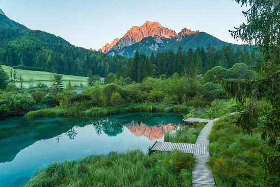 Kranjska Gora et les Alpes