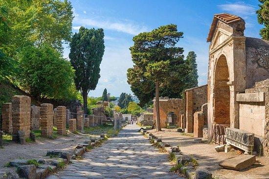VIP-dagtocht naar Pompeii en Sorrento ...