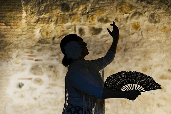 Flamenco, Tapas and Wine Tour: BEST...