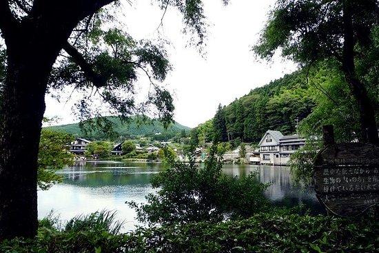 Beppu & Yufuin Onsen visite privée d'une journée