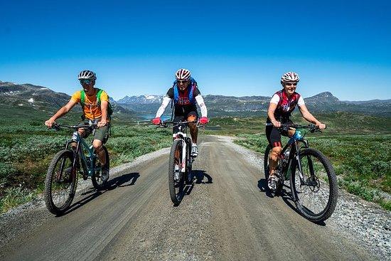 Rota de Ciclismo Mjolkevegen (7 dias)