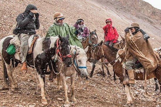 Excursión a caballo en Los Andes