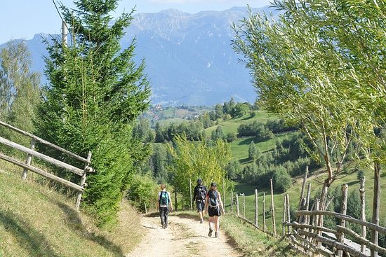 Small-Group Day Trip in Romanian Authentic Mountain Villages from...
