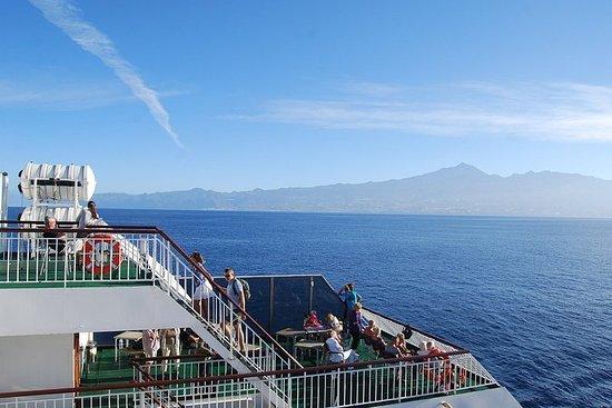 来自大加那利岛:有一天可以独自游览特内里费岛圣克鲁斯