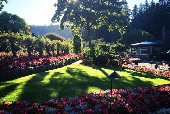 Butchart Gardens Shuttle fra Victoria Hotels & Entry-billett