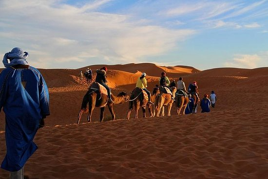 Sahara Désert 3 Days 2 Nights include transport tent lunch and B&B camel Ride Fotografie