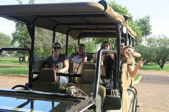 Morning Safari with Open Top vehicle in Pilanesberg leaving from...