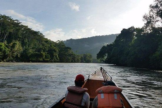 Expedición al Parque Nacional Río Abiseo - Privado