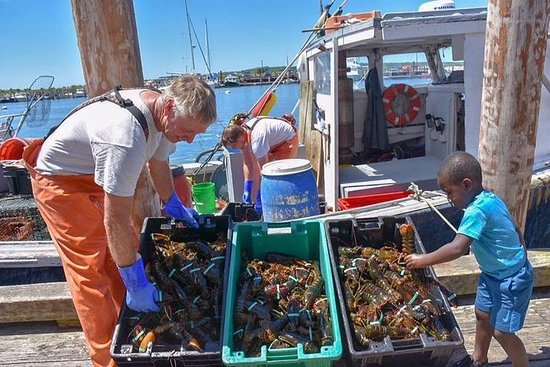Boston to Kennebunkport with Optional Lobster Tour